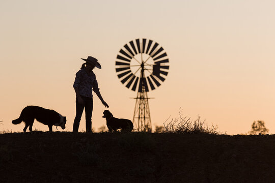 Female farmer petting dogs in silhouette with windmill