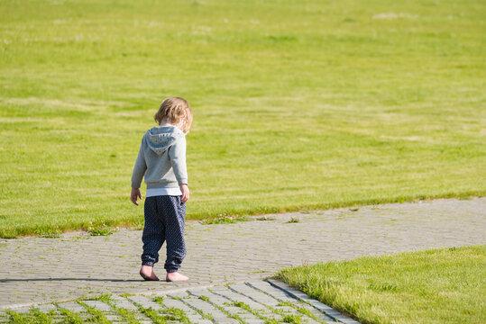 Small child walks along an alley in green field.