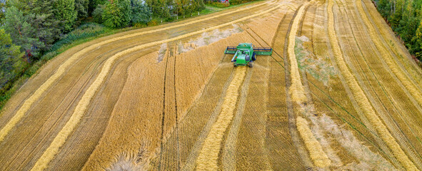 Aerial drone panorama shot of combine harvester, harvesting at the corner of small wheat field, on the countryside, Sweden. Wheat field is surrounded by green forest