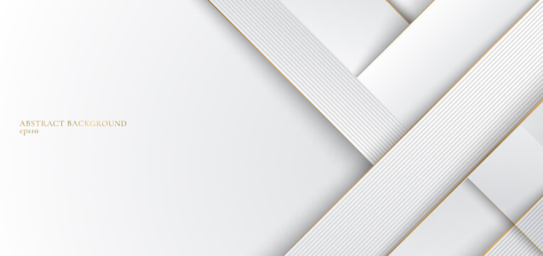 Abstract white and gray stripes with golden line elegant concept design