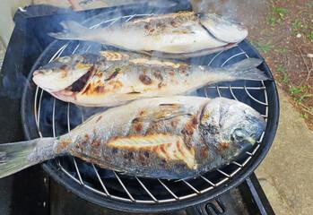 Grilled gilthead sea bream, dorada on the grill