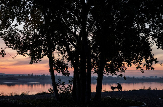 A man pets a dog on the embankment of Tom river during sunset in Tomsk