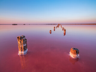 Photo sur Plexiglas Bordeaux smooth water and rows of old wooden trunks in sunset time with copy space