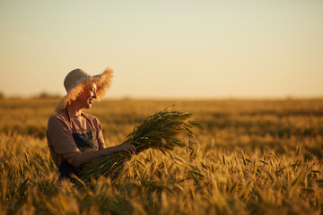 Side view view portrait of smiling woman walking across golden field holding heap of rye and wearing straw hat lit by sunset light, copy space