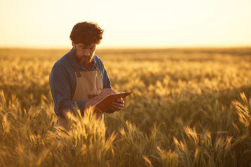 Waist up portrait of mature bearded man holding clipboard and wearing apron walking across golden field in sunset light, copy space