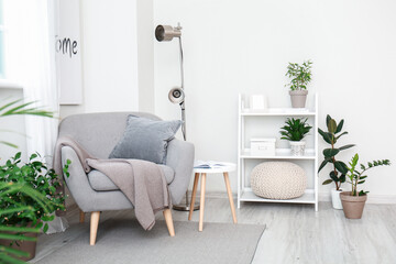 Interior of room with stylish armchair and houseplants near white wall