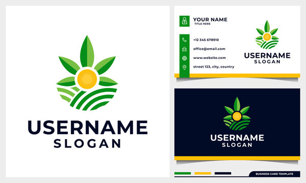 Agriculture with Cannabis leaf and sun concept  logo design with business card template