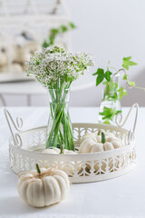 Thanksgiving table decoration with white pumpkins and sweet garlic flowers