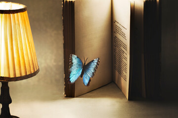 surreal and imaginative moment of a butterfly entering the pages of a book for a new story