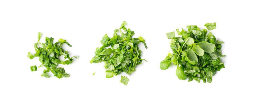 Fresh Green Chopped Basil Leaves Isolated on White Background