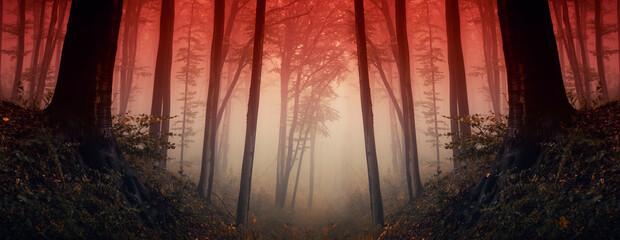 sunset in dark fantasy forest, forest panorama Fotobehang