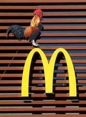 A sign of the U.S. fast food restaurant chain McDonald's is seen outside one of their restaurants in Brussels