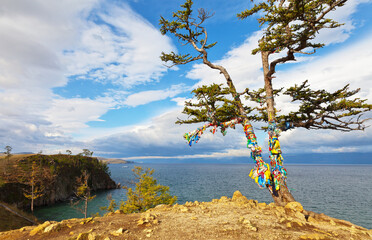 Baikal Lake. Olkhon Island. The famous Wish Tree with colorful tourist ribbons in September windy day. Beautiful landscape