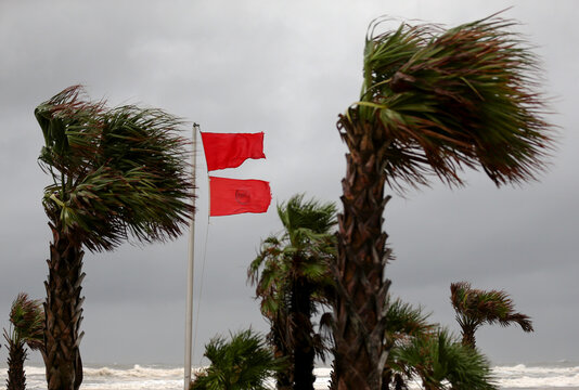 A red warning flag flies as palm trees sway in the wind as Hurricane Sally approaches in Gulf Shores