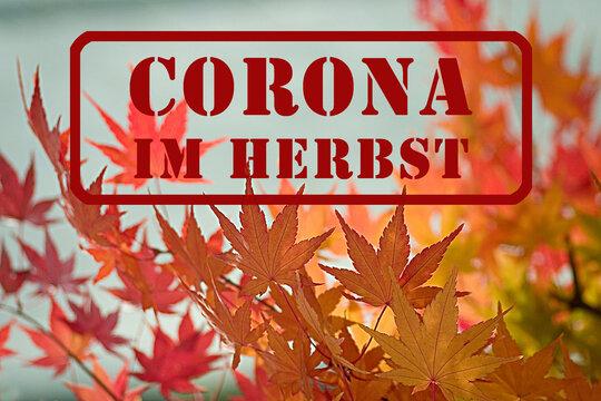 Roter Stempel mit Schriftzug: Corona im Herbst, steht im Herbst, vor blauem Himmel, an einem Ast mit schönem gelben und orangen Herbslaub, geschrieben.