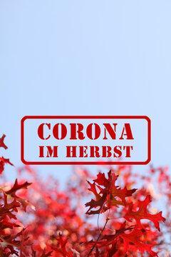Roter Stempel mit Schriftzug: Corona im Herbst, ist im Herbst, als Warnung, auf blauem Himmel, vor Ast mit schönem gelben und orangen Herbslaub, gestempelt IV