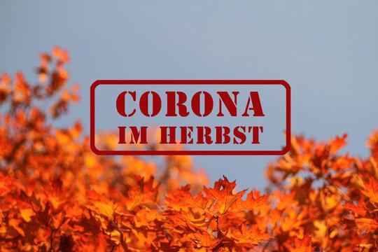 Roter Stempel mit Schriftzug: Corona im Herbst, ist im Herbst, als Warnung, auf blauem Himmel, vor Ast mit schönem gelben und orangen Herbslaub, gestempelt VI