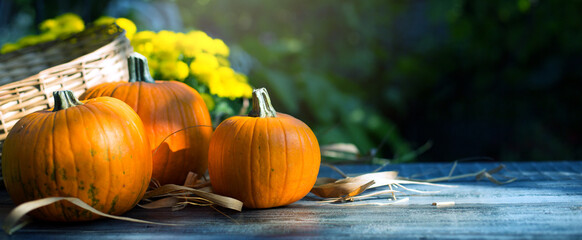 Hello autumn. Thanksgiving holiday party background, autumn pumpkin on wooden table