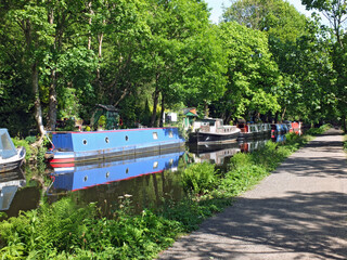 canal boats moored opposite the path on the rochdale canal near hebden bridge surrounded by trees in summer sunlight