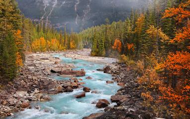 Fototapeta Boulders and rocks in fresh water stream at rural British Columbia in autumn time  obraz