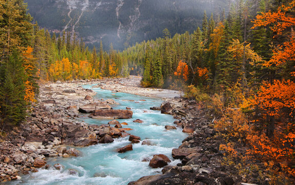 Boulders and rocks in fresh water stream at rural British Columbia in autumn time