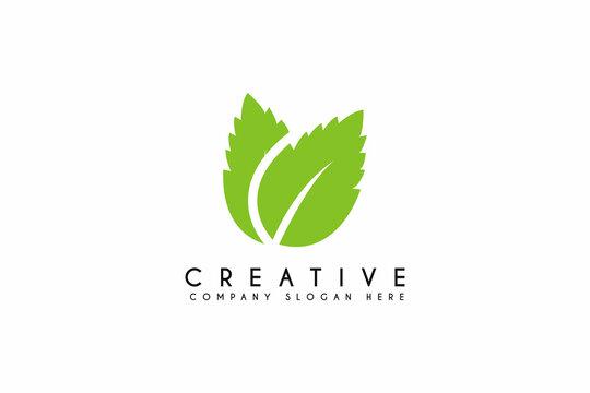 Fresh mint leaves logo design on white background. Vector illustration