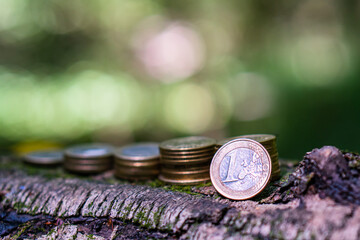 coins stacked on the bark of a tree in ascending order. Symbol of stable profit.