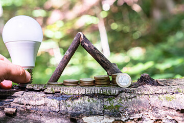 coins stacked on the bark of a tree in ascending order. And light bulbs as a symbol of economy.
