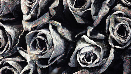 Black roses background with wihte glitter