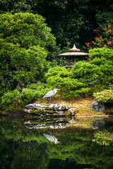 Japan, Kyoto,ÔøΩHeron by pond and stone lantern in Japanese garden