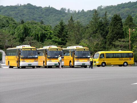 South Korean School Buses in parking lot