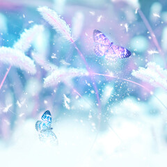 Pink butterflies in flight against the background of wild grass in the snow. Fabulous winter spring image. Magic garden. Winter wonderland.  Square format.