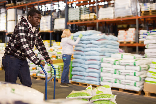 Glad African American warehouse worker pushing handtruck with sacks