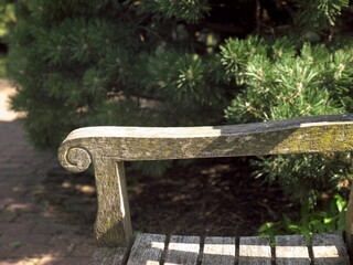 Armrest of a wooden bench placed in the green surroundings of a park or garden. The wood attacked by the weather, mosses have settled on the wood surface.  Light and shadow create structures