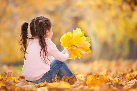 Happy girl playing yellow leaves in the autumn park. Beauty nature scene with family outdoor lifestyle. Happy girl having fun outdoor. Happiness and harmony in childhood