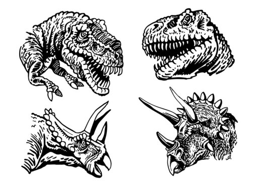 Vector set of dinosaurs' portraits isolated on white, tyrannosaurus and triceratops