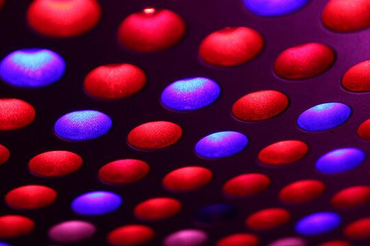 LED Full spectrum grow lights for growing indoor plants