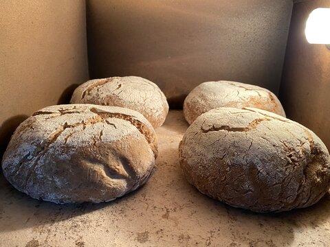 Frisch eingeschobenes Brot im Steinbackofen