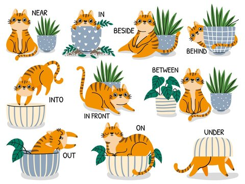 English prepositions. Educational visual material for kids learning language. Cute cat behind, above, near and under flower pot vector set. Foreign language for children illustration