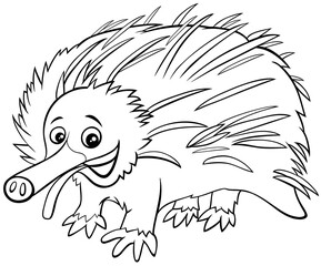 funny cartoon echidna animal coloring book page