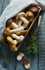 art fresh forest porcini Mushroom  in basket on the kitchen table