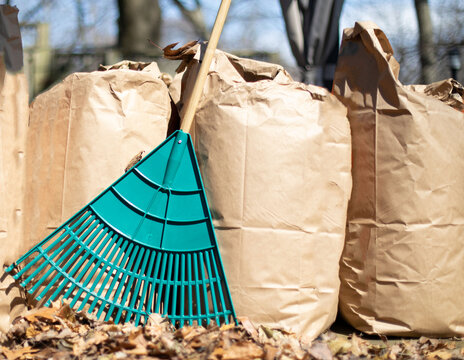a row of paper leaf composting bags with a leaf rake leaning on them