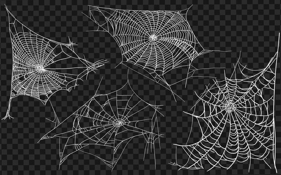 Set of different spiderwebs isolated on black, easy to print. Halloween set with web. Vector Illustration.