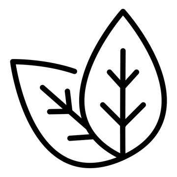 Basil plant leaf icon. Outline basil plant leaf vector icon for web design isolated on white background