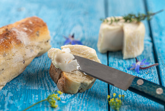 Goat cheese crottin de chavignol. Speciality, dairy on blue wooden background