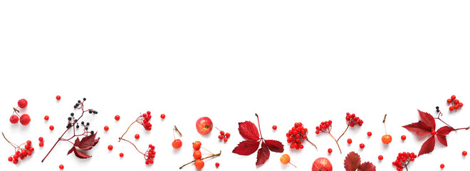 Fototapete - Autumn background, frame, banner.Creative flat layout of red autumn leaves, wild apples, twigs, rowan berries and viburnum, top view.
