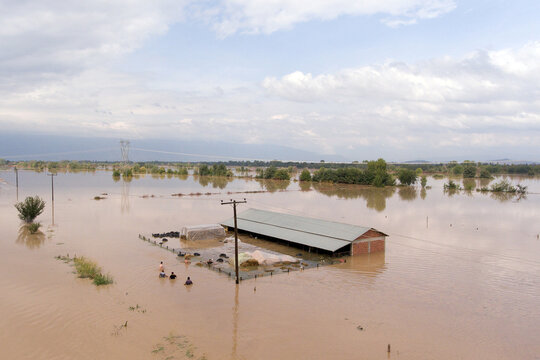 Sheep breeders reach a flooded farm to save their animals, following a storm near the village of Megala Kalyvia