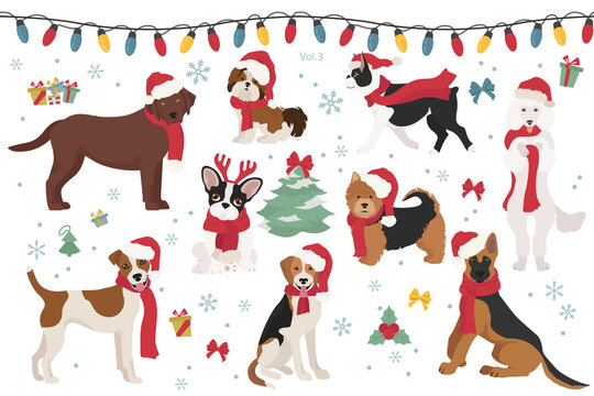 Dog characters in Santa hats and scarves. Christmas holiday design