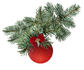 Fir tree,red shiny ball  and pinecone  isolated on white background