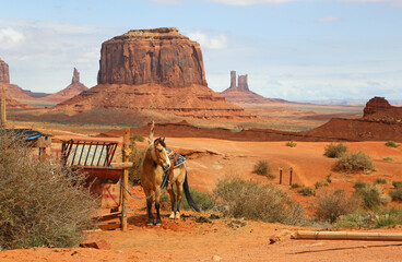 Horse in western scenery - Monument Valley - Arizona, Utah